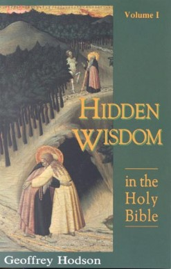 Hidden Wisdom in the Holy Bible: Volume 1